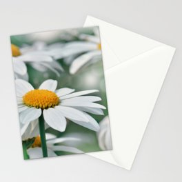 Marguerite 093 Stationery Cards
