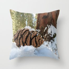 Sequoia Cone in Snow Throw Pillow