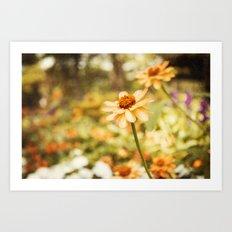 Orange Bliss Art Print