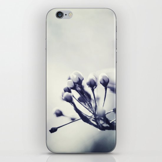 Spring in Black and White III iPhone Skin