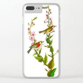Chestnut Sided Warbler Bird Clear iPhone Case
