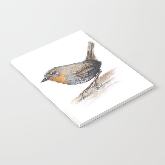 Chucao Bird Watercolor Animal Portrait Notebook