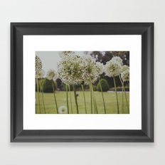 Flowers swoon Framed Art Print