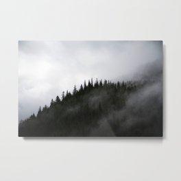 Northwest Metal Print