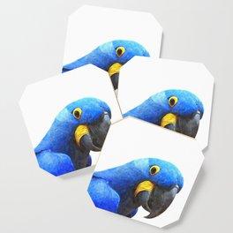 Blue Parrot Portrait Coaster