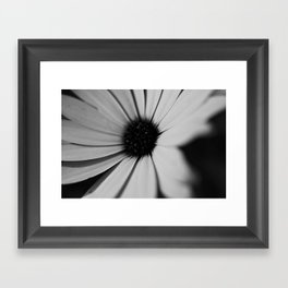 Black Daisy Framed Art Print