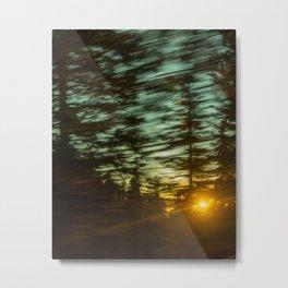 Lost Luz Metal Print