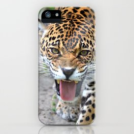 One Angry Cat iPhone Case
