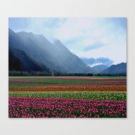 Carpet of Tulips Canvas Print