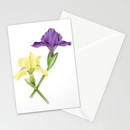 Watercolor irises Stationery Cards