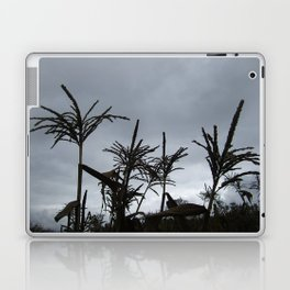 Dusk on the Island Laptop & iPad Skin