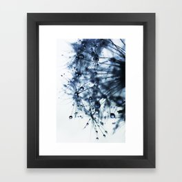 dandelion blue XII Framed Art Print