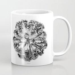Echeveria engraving Coffee Mug