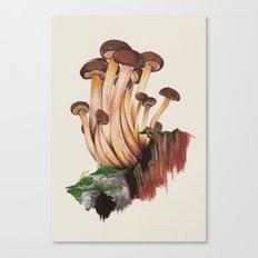 Mushy Canvas Print