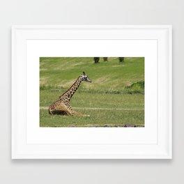 Chill Giraffe Framed Art Print