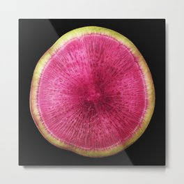 Watermelon Radish Metal Print