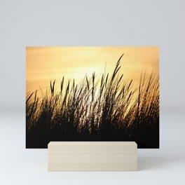 Beachgrass at Sunset Mini Art Print