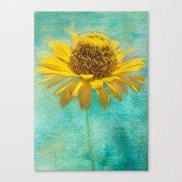 Zingy Zinnia Canvas Print