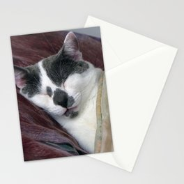 Cat Napping Stationery Cards