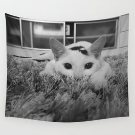 kitty ready to pounce Wall Tapestry