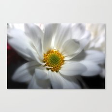 Whites Canvas Print