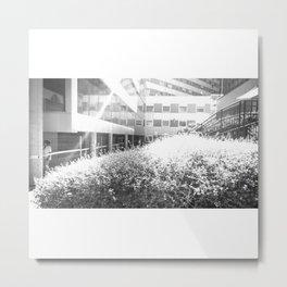 El rayo de luz Metal Print