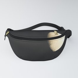 The First Prairie Dog on the Moon Fanny Pack