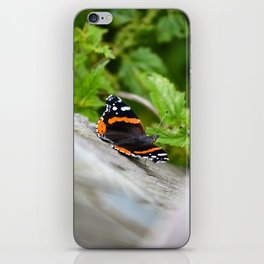 Butterfly Resting iPhone Skin