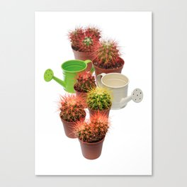Bunch of multicolor cactuses and watering cans Canvas Print
