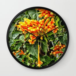 Spectacular orange trumpet flower Wall Clock