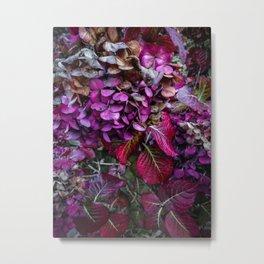 Holy Hydrangea VI Metal Print