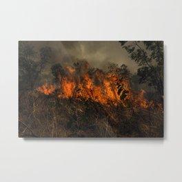 Grass Fire Metal Print