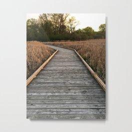 Westwood Hills Nature Center, St. Louis Park, MN Metal Print