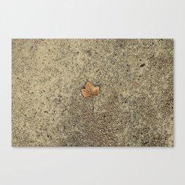 Forgotten Autumn  Canvas Print