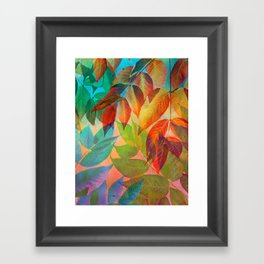 Autumn Lights and Colors Framed Art Print