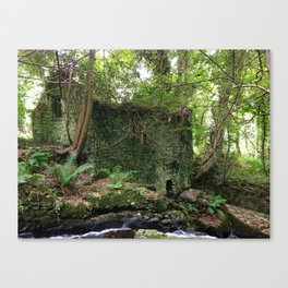 House in Woods Canvas Print