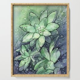 Crystal Succulents in Watercolor Serving Tray