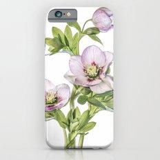 Hellebore Slim Case iPhone 6s