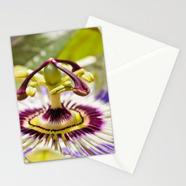 Passion Flower Bloom Stationery Cards