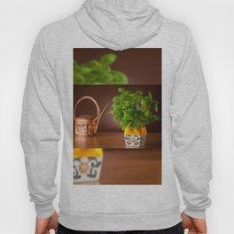 Ocimum basil plant in decorative flowerpot Hoody