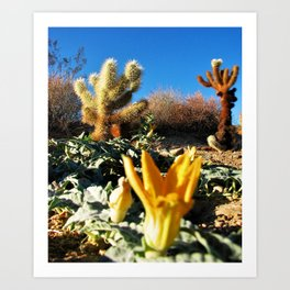 Joshua Tree National Forest Series 1 Art Print