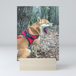 Shiba Inu yelling in the woods Mini Art Print