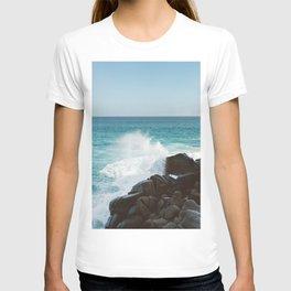 Pedregal, Mexico IV T-shirt