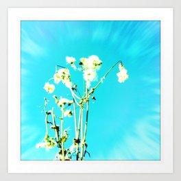 sun-flower Art Print