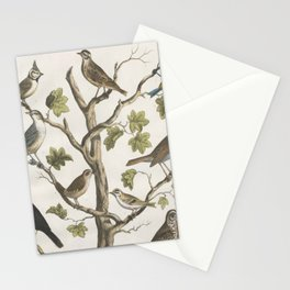 Vintage Naturalist Birds Stationery Cards