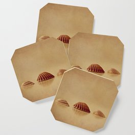 Shells Coaster