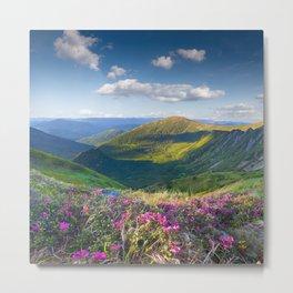 Floral Mountain Landscape Metal Print
