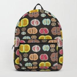 Lithops Backpack