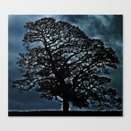 Tree. A simple tree. Canvas Print