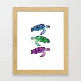 Island Sea Turtles Framed Art Print